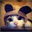 Perfil Kitty__Batata