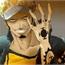 Perfil law_dos_animes