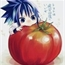 Perfil Lady_tomate