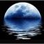 Perfil Blue_Moon_
