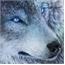 Perfil Ragnar_Howler