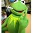 Perfil Kermit8423