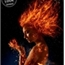 Perfil Feuer_Phoenix
