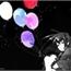 Perfil Megami_chan