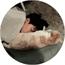 Perfil Chim_dos_yaoi