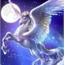 Perfil Pegasus-999