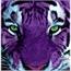 Perfil Purple_Tiger
