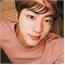 Perfil Kim-SeokNihJoon