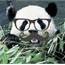 Perfil Panda-Purpurina