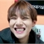 Perfil Panda_KimChou