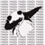 Perfil pandacornio14