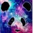 Perfil Pandaespacial99
