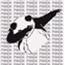Perfil PandaFosdatico1