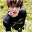 Perfil pandana_Hyung