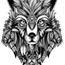 Perfil raposablack