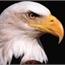 Perfil EaglePrincess
