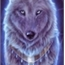 Perfil Sarahthewolf