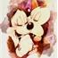 Perfil Damie_jakota