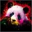 Perfil panda_lilas