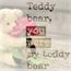 Perfil TeddyBear14