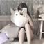 Perfil Hodeoki_