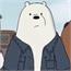 Perfil ursopollar