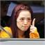 Perfil kimchi-