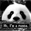 Perfil Pandavitoria
