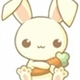 ~bunnykawayy