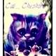 ~Cat_Cheshire