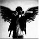 ~Dark_Angel-