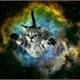 ~GalaxyCat