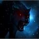 ~wolf-black