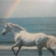 ~_unicorn_