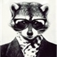 ~le-raccoon