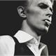 ~Anne-Bowie