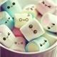 ~Marshmallow-san