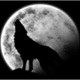 ~Shadownight