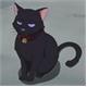 ~Stupid_Cat