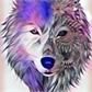 Usuário: WolfsMoon