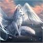Usuário: foxangel2010
