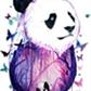 Usuário: ~_PandaMochiatto