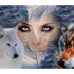 Usuário: WolfAce