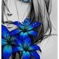 Usuário: ~Nanna_chan
