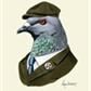 Usuário: Pigeon_Queen