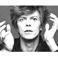 BowieBe