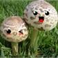 Usuário: CogumeloMoving