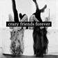 Usuário: ~CrazyFriendsAL