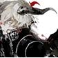 Usuário: ~DarkGold