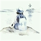 Usuário: bluewaterlily